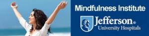 Mindfulness-institute